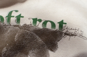 2-color Plastisol Print on Anvil Sustainable Hoodie (detail)- Special two-of-a-kind going-away present for a dear friend.